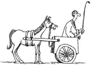 Putting The Cart Before The Horse on front cartoon car