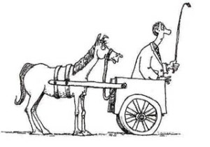 cart-before-the-horse