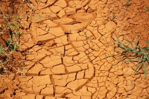 dry_ground