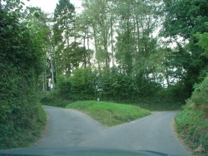 a_fork_in_the_road_-_geograph-org-uk_-_558151